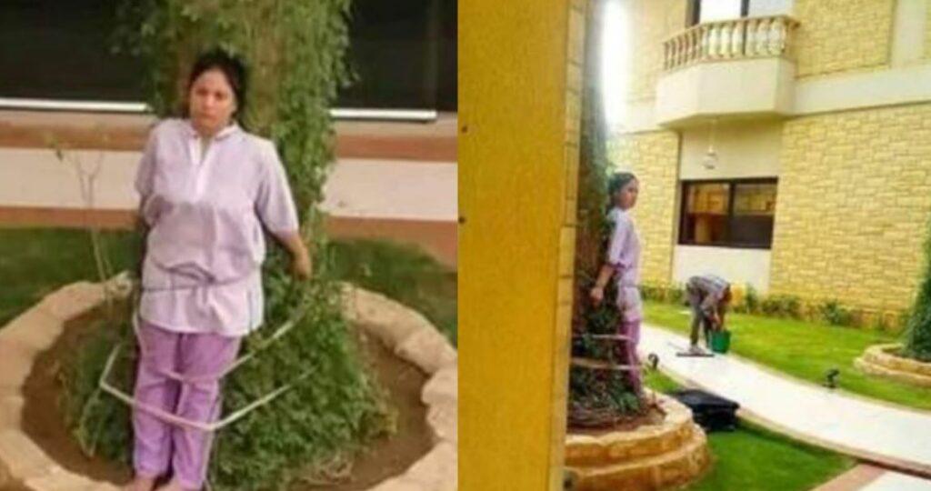 Empleada doméstica fue atada un árbol como castigo
